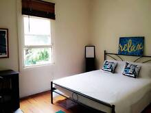 Huge sunny room in Sydney CBD Paddington Eastern Suburbs Preview