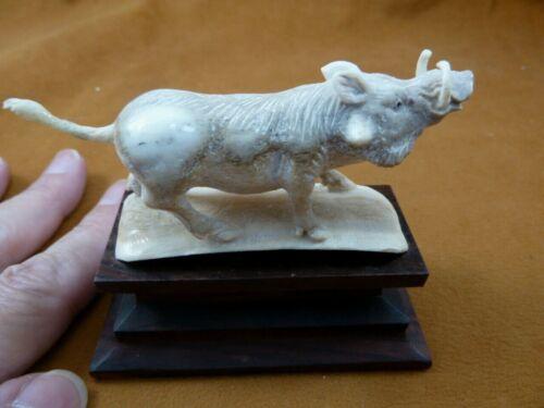 (wart-17) Wild hogs Warthog of shed ANTLER figurine Bali detailed carving boar