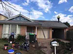 Roof painting Parramatta Parramatta Area Preview