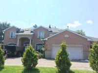Peterborough Premium Roofing&Fixing Unbeatable price6475004673
