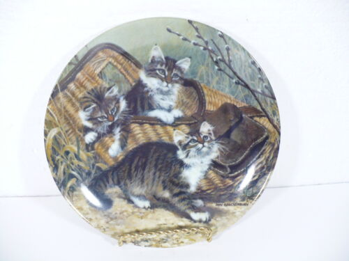 """Knowles 1987 Kittens GONE FISHING : MAINE COONS by Amy Brackenbury 8-1/2"""" plate"""