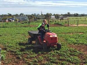Block mowing with ride on mower Kudla Gawler Area Preview