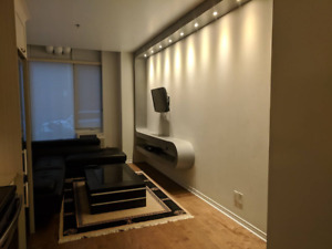 Heart of Downtown -  Condo for rent