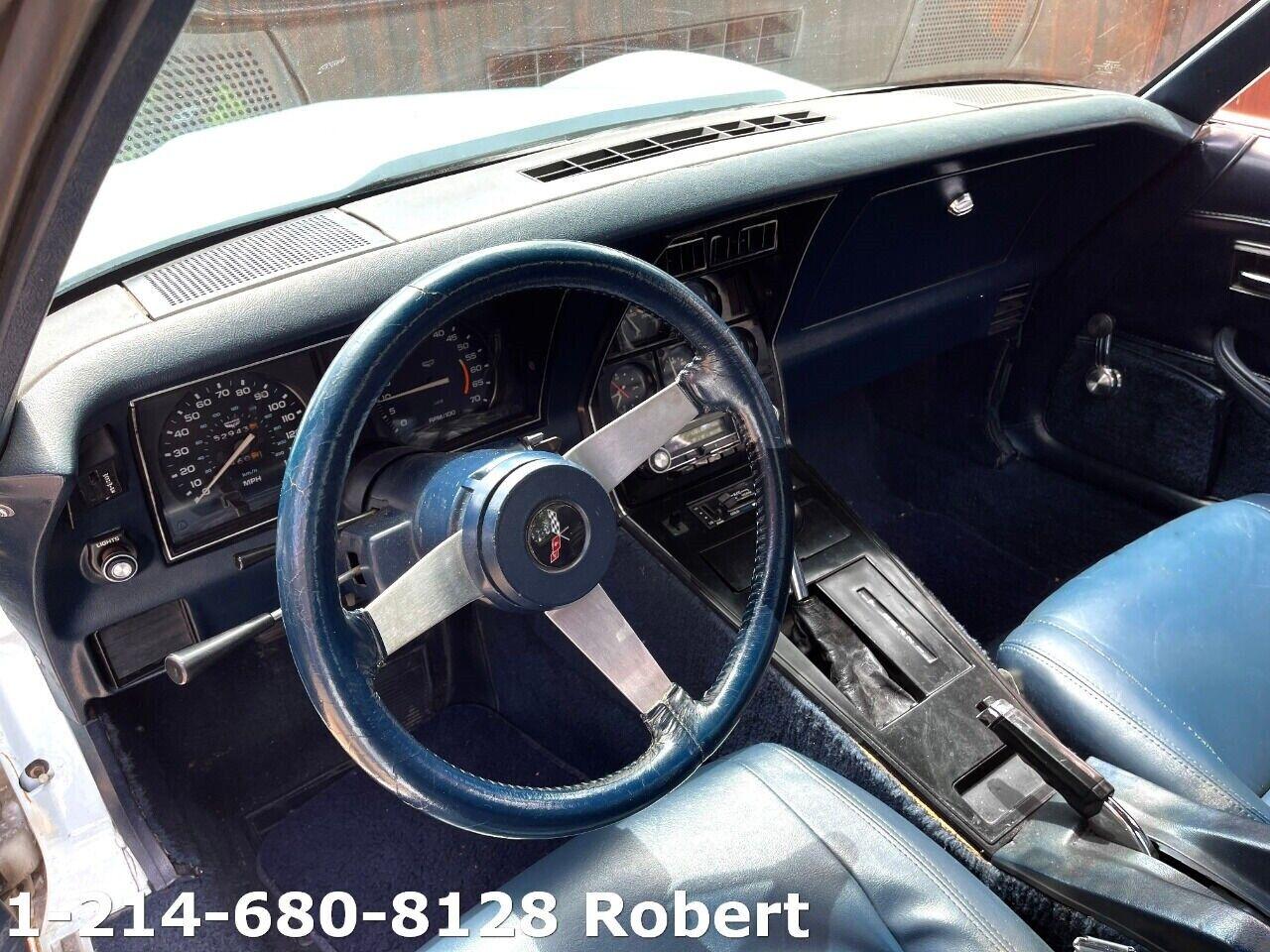 1979 White Chevrolet Corvette     C3 Corvette Photo 9