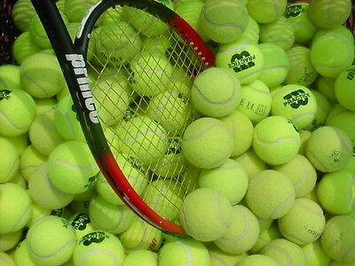 15 USED TENNIS BALLS - GREAT CONDITION - FREE POSTAGE !!!