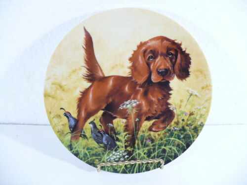 "Knowles 1988 Dog MISSING THE POINT-THE IRISH SETTER collectors 8-1/2"" plate"