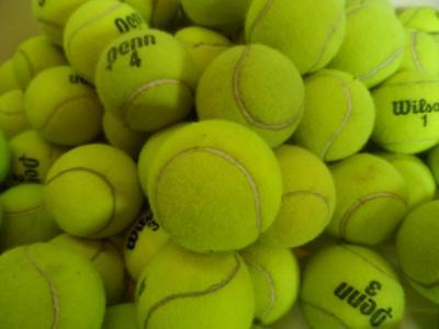 25 Dead Used Wilson Penn Tennis Balls Serving Dogs Toys Dog Play Fetch Walkers