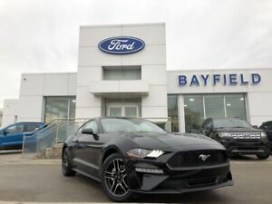 2019 Ford Mustang EcoBoost SYNC VOICE ACTIVATED SYSTEM|ADVANC...