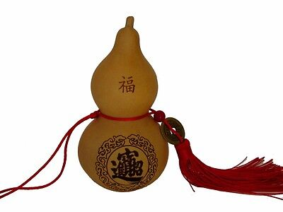 Feng Shui Chinese Wu Lou Charm with Coin
