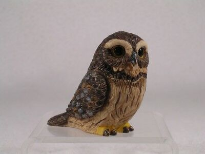 Harmony Kingdom   Ball Pot Bellys Belly Pygmy Owl  Pbzow6 Retired New In Box