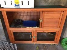 Guinea pigs rabbit hutch double story Ryde Ryde Area Preview
