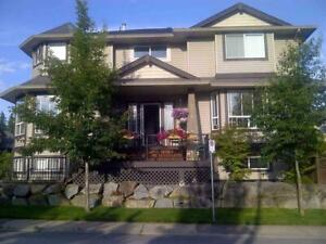 9026 216A STREET Langley, British Columbia
