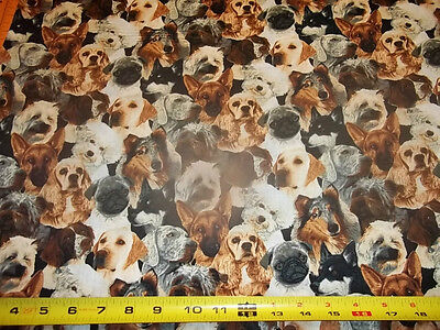 DOGS FABRIC  - MULTI  DESIGN - GREAT PRINT - NEW!!! 100% COTTON  1/2 YARD PIECE for sale  Shipping to India