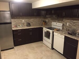 1 bedroom fully furnished/ renovated basement apartment