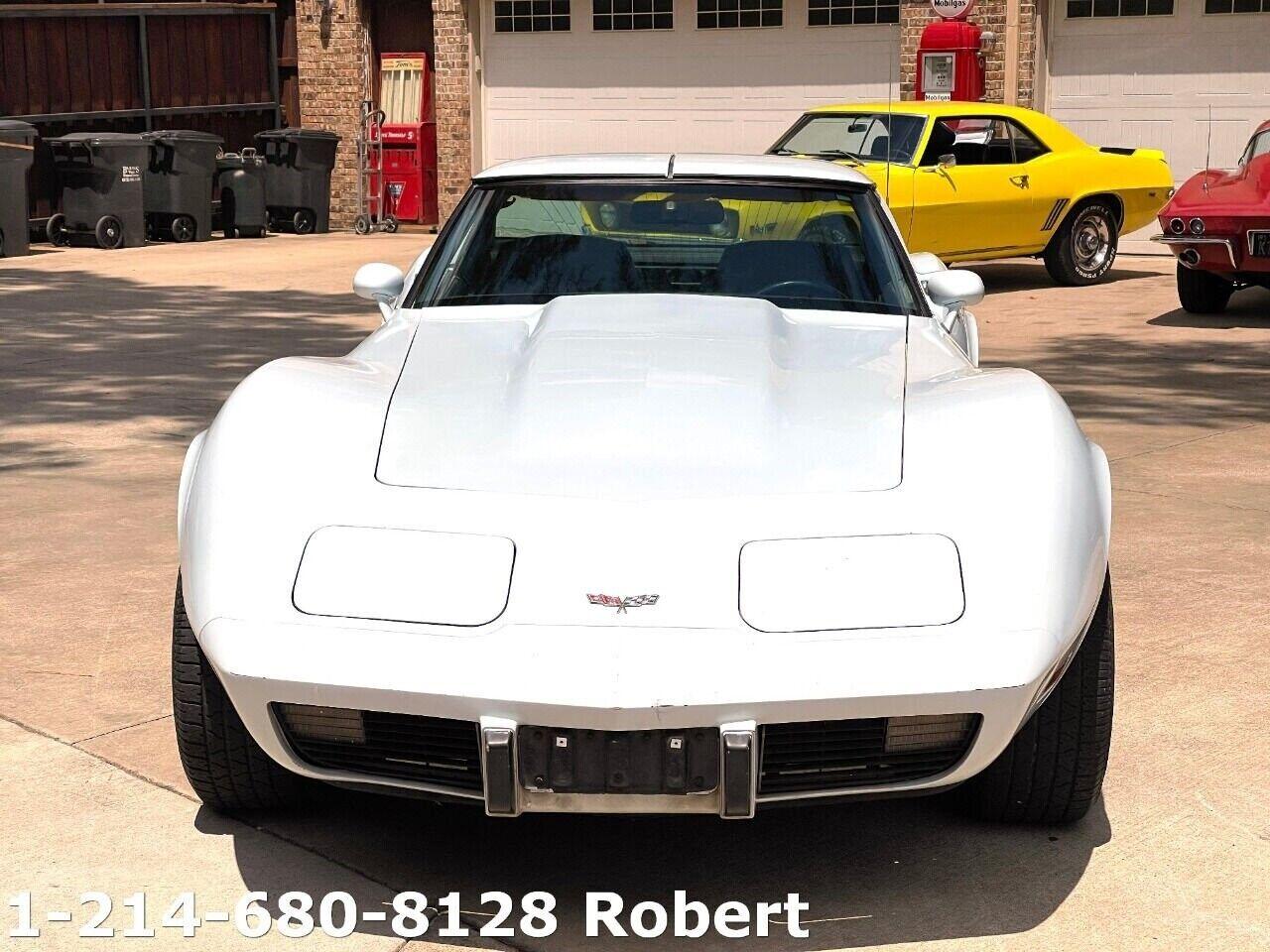 1979 White Chevrolet Corvette     C3 Corvette Photo 2