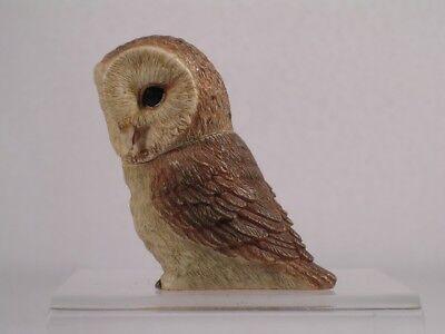 Owl Pot Belly - Harmony Kingdom / Ball Pot Bellys / Belly 'Barn' Owl #PBZOW7 New In Box