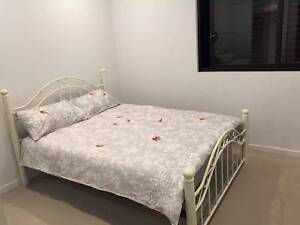 Ensuite Double Master room in beautiful apartment in Dee Why Dee Why Manly Area Preview