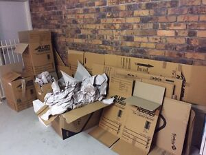 Packing material Carina Brisbane South East Preview