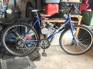 49cc 50cc motorized bicycle. Starts everytime! New carb!