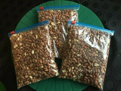 Wild Bird Food. 1.5Kg. (3x 500g) Good Quality Fresh Peanuts. £3 p&p Incl.