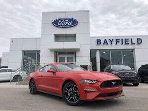 2019 Ford Mustang EcoBoost 10 SPEED AUTOMATIC|BLADE DECKLID S...