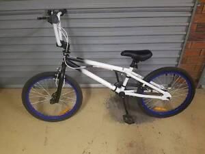 Repco Axle Boys BMX Bike Bracken Ridge Brisbane North East Preview