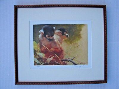 SQUIRREL MONKEY STUDY- John Seerey-Lester Limited Edition Prints # 97/150 FRAMED