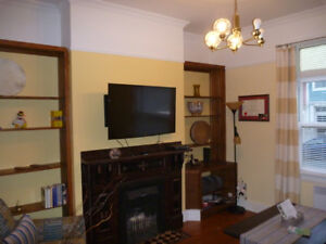 Fully Furnished 1 Bedroom Apartment Downtown $1200 POU