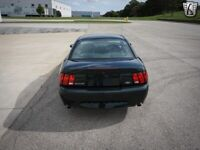 Miniature 7 Voiture Américaine d'occasion Ford Mustang 2001