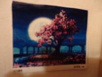 Malen nach Zahlen Rosa Baum mit Mond Hessen - Fürth Vorschau
