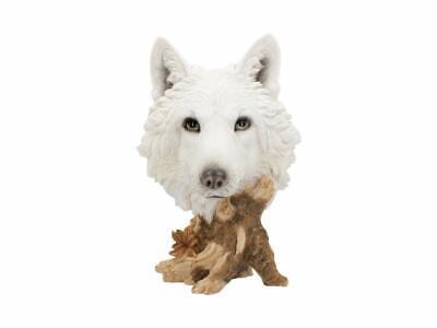 Nemesis Now - Wild Winter Wolf Bust Figurine - 27.5cm U4538N9