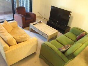 Room for female Chippendale Inner Sydney Preview