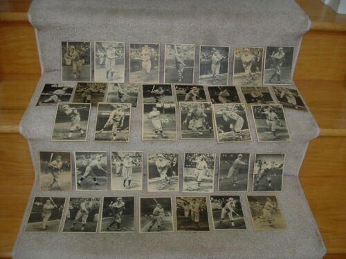 (50) 1929 R316 Kashin Publications W Hofers Grove Foxx Hornsby Maranville +