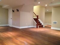 Full Basement and Home Renovation
