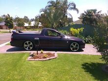 for sale or  swap for project car? Wollongong 2500 Wollongong Area Preview