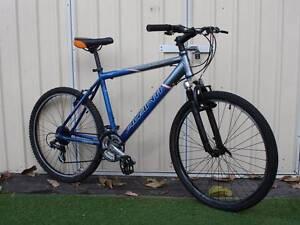Aluminium Grey Blue Mountain Bike Kingsford Eastern Suburbs Preview