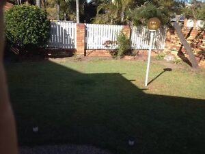 A separate granny flat to rent Sunnybank Hills Brisbane South West Preview