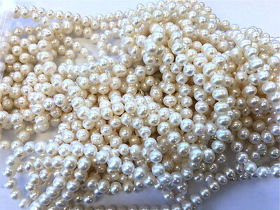 Wholesale Lot 600 grams 5-7.5mm White Oblong Genuine Cultured Freshwater Pearls