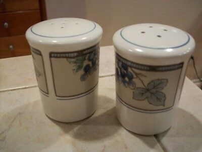 Mikasa Garden Harvest salt & pepper shaker set mint condition~low fast shipping (Mikasa Pepper Salt)
