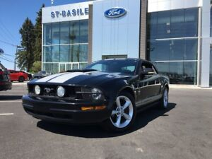 2005 Ford Mustang V6 / Convertible 6 cyl. 4L / Red leather