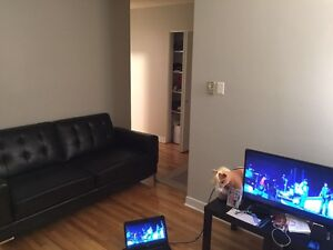 3 1/2 apartment for rent (lease transfer)