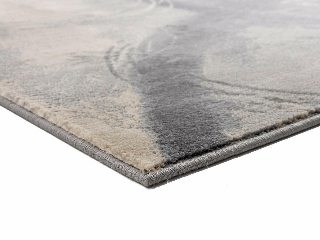 Rugs Area Rugs Carpets 8x10 Rug Modern Large Floor Room