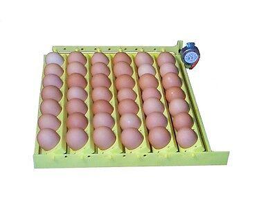 HovaBator Automatic Egg Incubator Turner 1610   Universal/Chicken & Quail Racks (Quail Egg Racks)