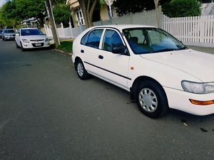 Toyota corolla long rego with RWC Ascot Vale Moonee Valley Preview
