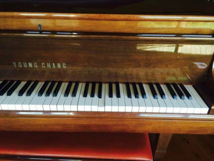 Young Chang Regal Grand G157 Baby Grand Piano Kurrajong Hills Hawkesbury Area Preview