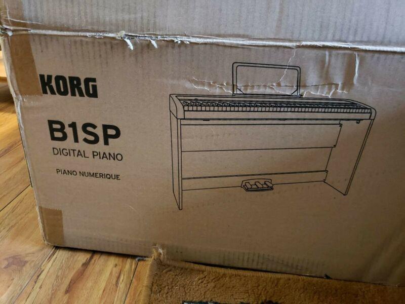 B1 Korg Piano