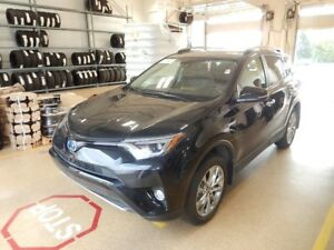 2017 Toyota RAV4 Hybrid Limited Fuel saver