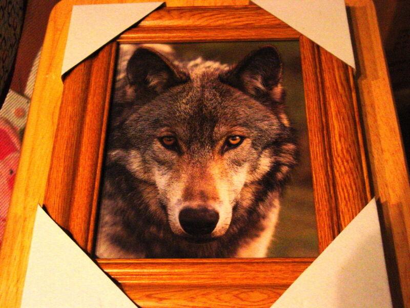 WOLF 11X13 MDF FRAMED PICTURE ( WOOD COLOR FRAME )