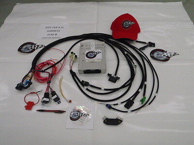 JEEP 258 4.2L TBI Harness W/ECM Fuel Injection Wire Harness W/INGITION MODULE