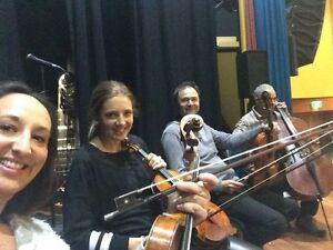 Hunter Valley Quartet Morpeth Maitland Area Preview